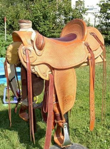 Ray holes Saddle